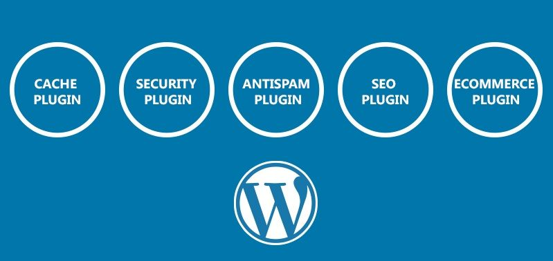 Create a WordPress blog that grows healthy and strong